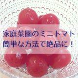 家庭菜園のミニトマトを簡単な方法で絶品に