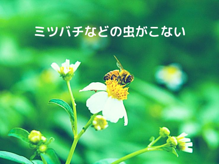 ミツバチなどの虫がこない