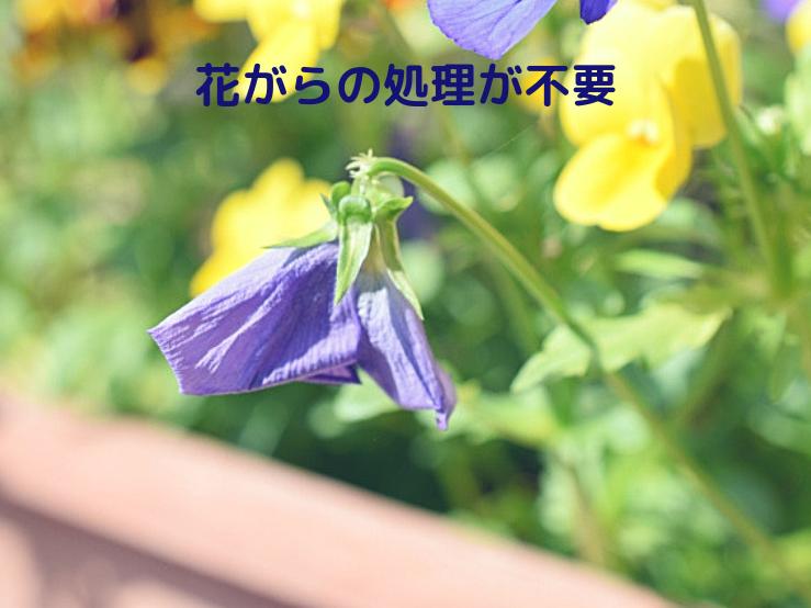 花がらの処理が不要